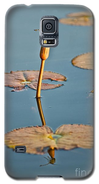 Galaxy S5 Case featuring the photograph Dragonfly And Lotus by Luciano Mortula