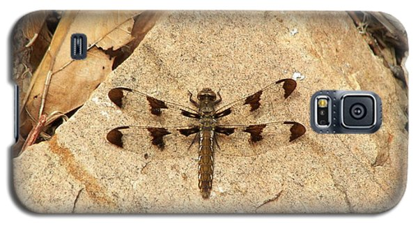 Galaxy S5 Case featuring the photograph Dragonfly At Rest by Deniece Platt