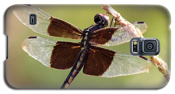 Galaxy S5 Case featuring the photograph Dragonfly Closeup by Kathy  White