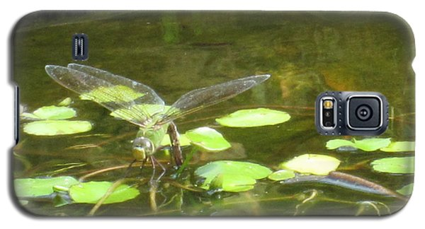 Galaxy S5 Case featuring the photograph Dragonfly by Laurianna Taylor