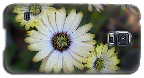 Dream Daisy Galaxy S5 Case