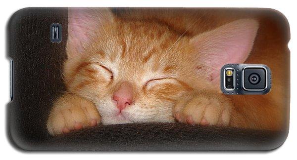 Dreaming Kitten Galaxy S5 Case