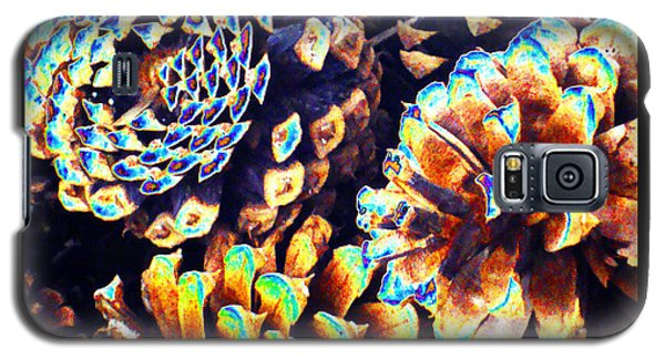 Galaxy S5 Case featuring the photograph Dreamtime Pinecones by Susanne Still