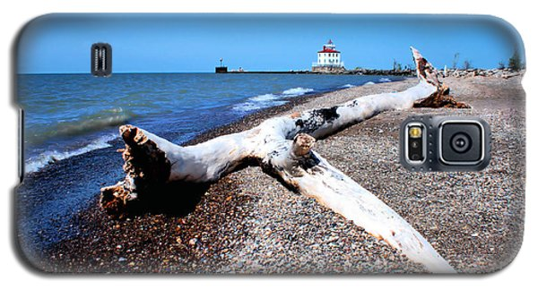 Galaxy S5 Case featuring the photograph Driftwood At Erie by Michelle Joseph-Long