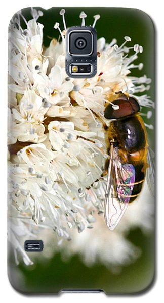 Galaxy S5 Case featuring the photograph Drone Fly by Mitch Shindelbower