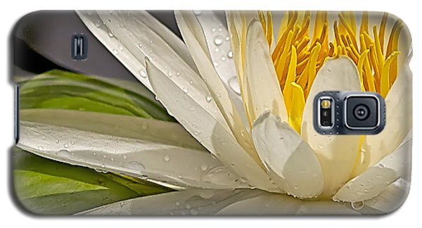 Galaxy S5 Case featuring the photograph Droplets On The Lily by Anne Rodkin