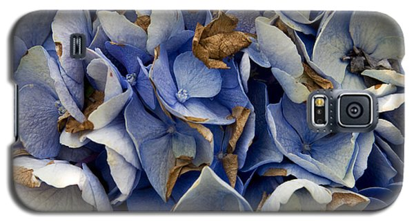 Galaxy S5 Case featuring the photograph Drying Hydrangea by Michael Friedman