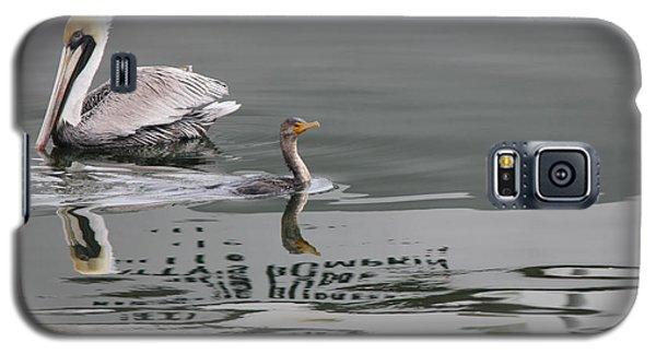 Duck Crossing Galaxy S5 Case by Deborah Hughes