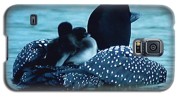 Galaxy S5 Case featuring the photograph Duck Family Joy In The Lake  by Colette V Hera  Guggenheim