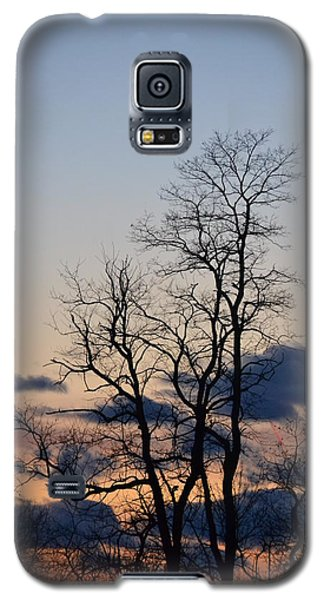 Dusk Galaxy S5 Case by Bonnie Myszka