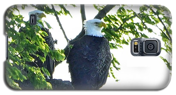 Galaxy S5 Case featuring the photograph Eagle Court by Nava Thompson