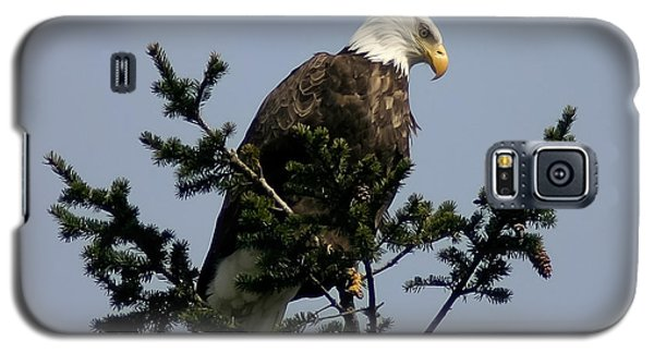 Galaxy S5 Case featuring the photograph Eagle Eye Vista by Mitch Shindelbower