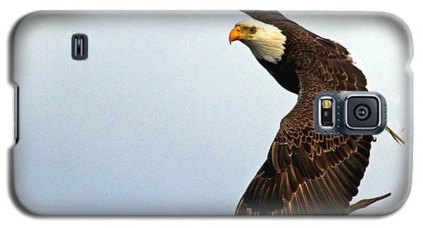 Galaxy S5 Case featuring the photograph Eagle Flight-wing Power by Larry Nieland