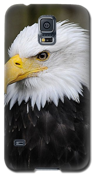 Eagle In Ketchikan Alaska 1371 Galaxy S5 Case by Michael Bessler
