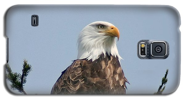 Galaxy S5 Case featuring the photograph Eagle  by Mitch Shindelbower