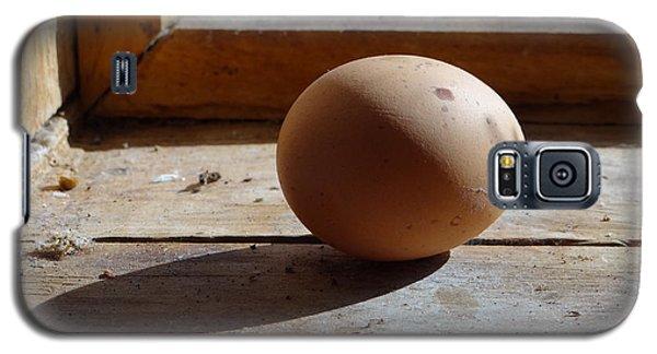 Egg On A Window Ledge Galaxy S5 Case by Carol Berning