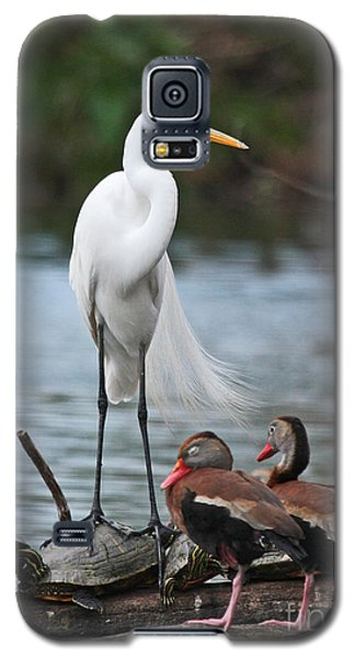 Galaxy S5 Case featuring the photograph Egret - Best Friends by Luana K Perez