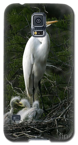 Galaxy S5 Case featuring the photograph Egret - Proud Mother by Luana K Perez