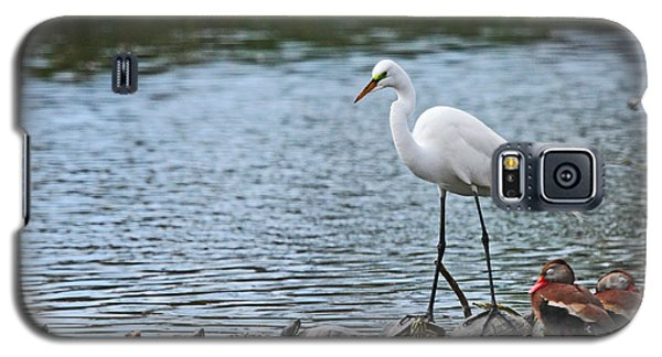 Galaxy S5 Case featuring the photograph Egret Bird - Supporting Friends by Luana K Perez