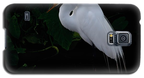 Egret On A Branch Galaxy S5 Case