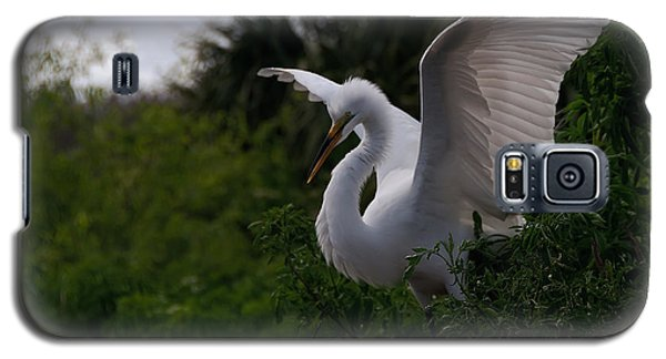 Galaxy S5 Case featuring the photograph Egret Wings by Art Whitton