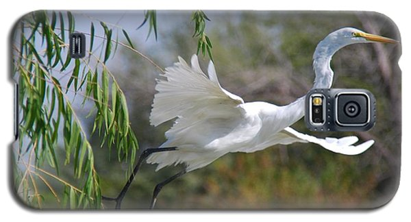 Galaxy S5 Case featuring the photograph Egret's Flight by Tam Ryan