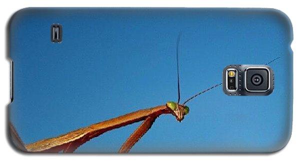 Cause Galaxy S5 Case - Elbow Mantis by Nate Doran