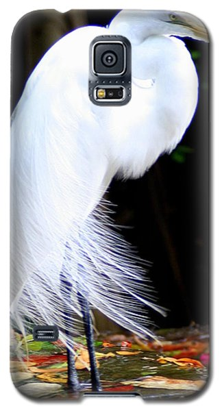 Elegant Egret At Water's Edge Galaxy S5 Case by Laurel Talabere