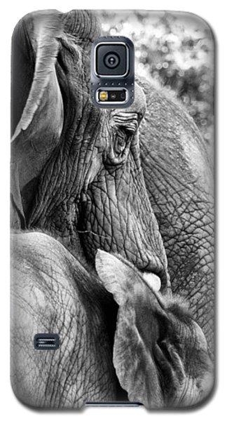 Elephant Ears Galaxy S5 Case