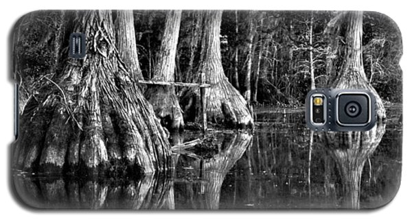 Galaxy S5 Case featuring the photograph Elephant Feet by Dan Wells