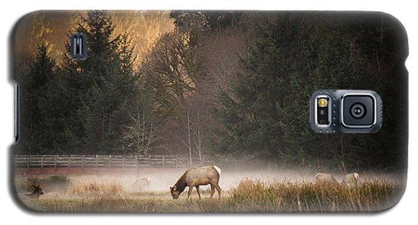 Elk Camp Galaxy S5 Case by Randy Wood