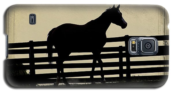 End Of The Day In Georgia - Horse Lovers Must See - Artist Cris Hayes Galaxy S5 Case