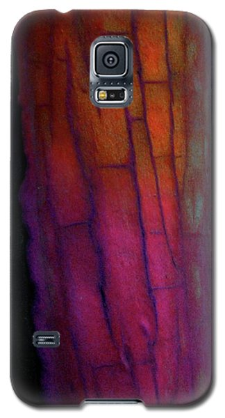Galaxy S5 Case featuring the digital art Enter by Richard Laeton