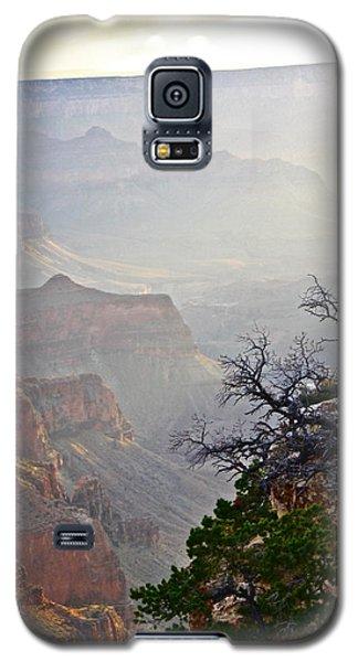 Evening Light Galaxy S5 Case