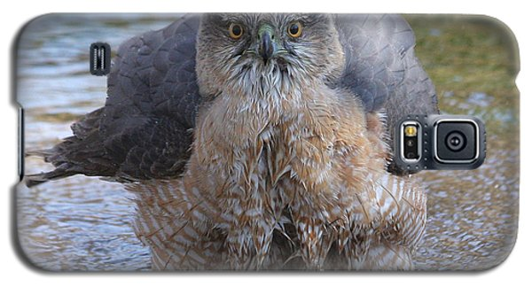 Excuse Me But I Am Bathing Here. Galaxy S5 Case by Doris Potter