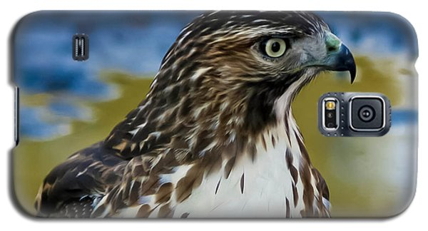 Galaxy S5 Case featuring the photograph Eye Of The Hawk by Mitch Shindelbower