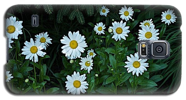 Galaxy S5 Case featuring the photograph Eyes by Joseph Yarbrough