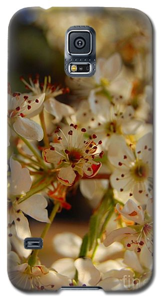 Faded Blossom Galaxy S5 Case