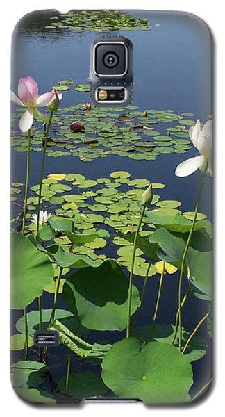 Fading Glory Galaxy S5 Case