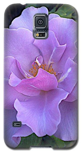 Faery Princess Galaxy S5 Case