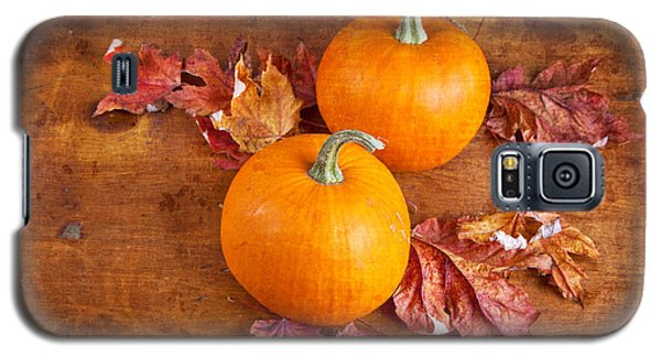 Galaxy S5 Case featuring the photograph Fall Decorative Pumpkins by Verena Matthew