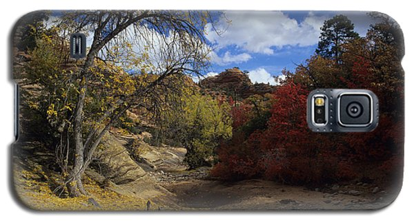 Fall In Zion High Country Galaxy S5 Case