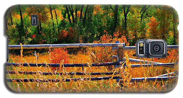 Galaxy S5 Case featuring the photograph Fall  by Janice Westerberg