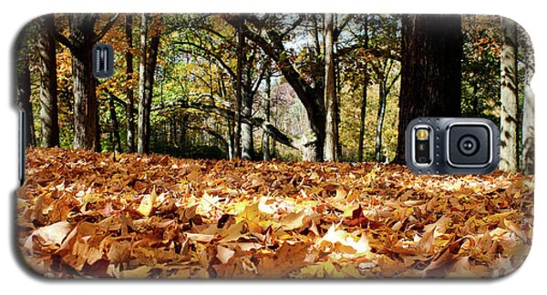 Galaxy S5 Case featuring the photograph Fall On The Ground by Rachel Cohen