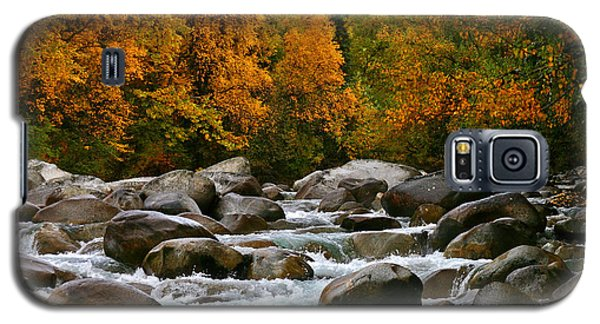 Fall On The Little Susitna River Galaxy S5 Case