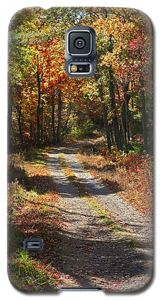 Galaxy S5 Case featuring the photograph Fall On The Wyrick Trail by Denise Romano