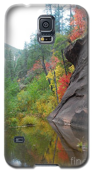 Fall Peeks From Behind The Rocks Galaxy S5 Case by Heather Kirk