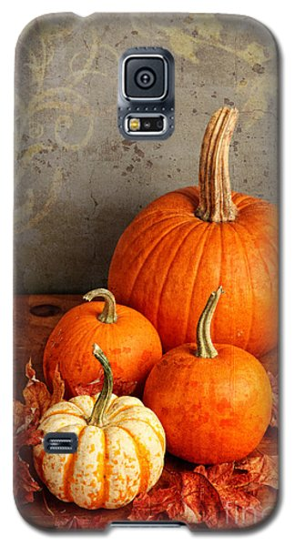 Galaxy S5 Case featuring the photograph Fall Pumpkin And Decorative Squash by Verena Matthew
