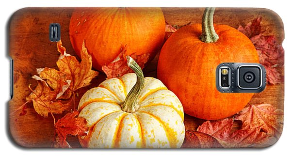 Galaxy S5 Case featuring the photograph Fall Pumpkins And Decorative Squash by Verena Matthew