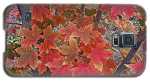 Fall Red Galaxy S5 Case by David Pantuso
